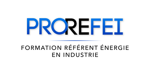 Formation PRO REFEI